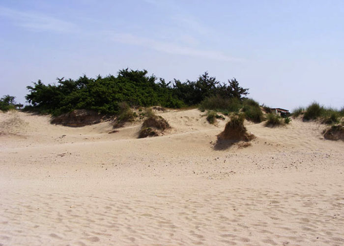 Le dune sabbiose