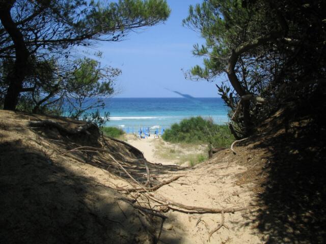 Acque limpide e cristalline, spiagge di sabbia fine e un mare meraviglioso, vi permetteranno di trascorrere vacanze in completo relax rigenerandovi cosi' dallo stress della vita quotidiana.