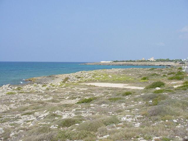 Torre Suda offre una scelta di vaste attivita' da svolgere: gite in barca, immersioni, pesca subacquea  per ammirare una flora e una fauna marittima tra le piu' belle della Puglia.