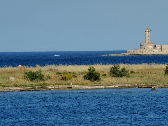 Quasi nel territorio di Brindisi incontriamo le splendide spiagge di Torre Canne per arrivare sino ad Ostuni ed alla sua baia sabbiosa. Tra la Marina di Ostuni e Brindisi incontriamo la riserva naturale statale di Torre Guaceto diventata col passare