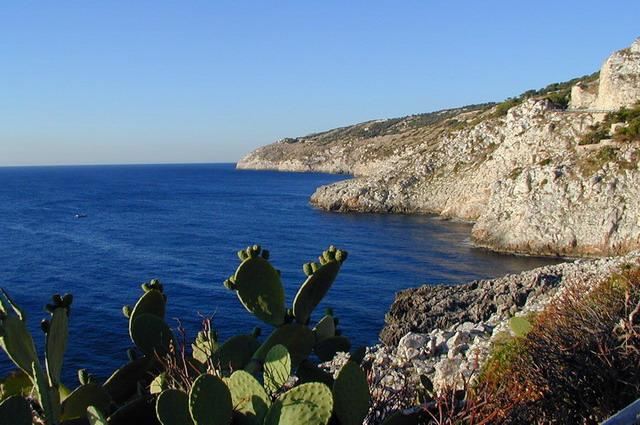La Marina di Novaglie, immersa tra gli ulivi, e' una piccola localita' marinara in provincia di Lecce. Novaglie e' frazione del Comune di Alessano ed e' collocata sul tratto di costa tra Marina Serra e Gagliano del Capo, nel basso Salento.