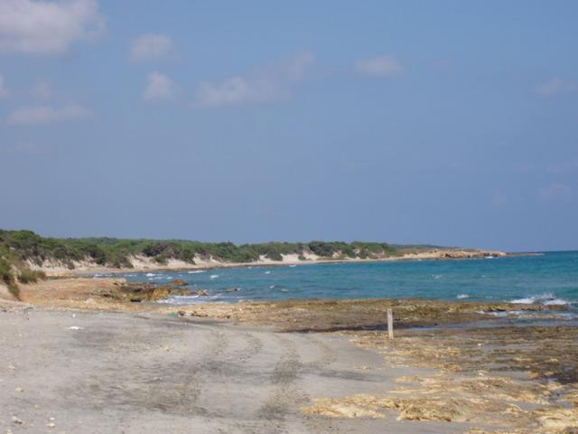 Frassanito presenta tratti di costa rocciosa e tratti di costa sabbiosa immerse nel verde della pineta e della macchia mediterranea.