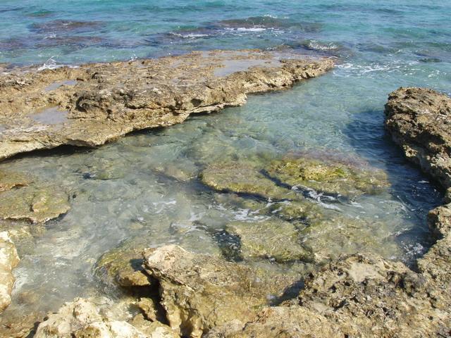 Frassanito e' una localita' costiera del Salento e si trova nei pressi dei laghi costieri degli Alimini.