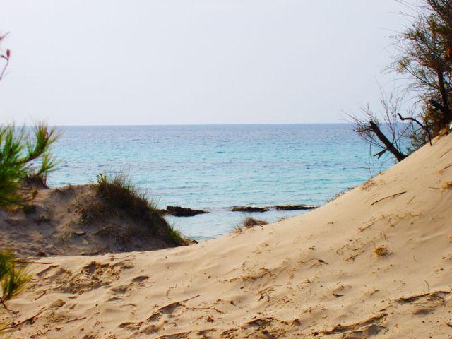 La spiaggia e' attrezzata e dotata di ogni servizio e nelle sue vicinanze si trovano moltissime strutture ricettive che fanno di Baia Verde una localita' turistico-residenziale alternativa a Gallipoli.