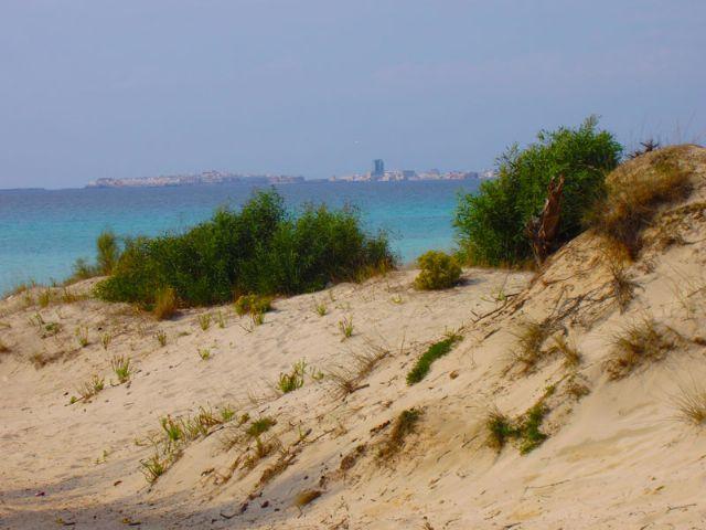 La spiaggia di Baia Verde presenta un fondale basso e acque cristalline con la baia che deve il suo nome ai riflessi verde smeraldo che l'acqua assume miscelandosi con la luce solare.