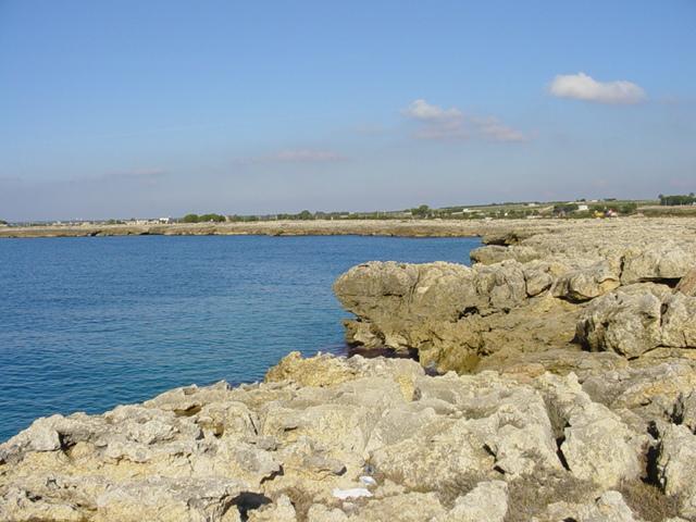 La costa e' ricca di insenature a scoglio basso e frastagliato, con calette che si alternano a brevi tratti sabbiosi
