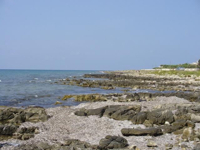 La costa di Marina di Alliste e' rocciosa ma comunque bassa e quindi facilmente accessibile a chiunque.