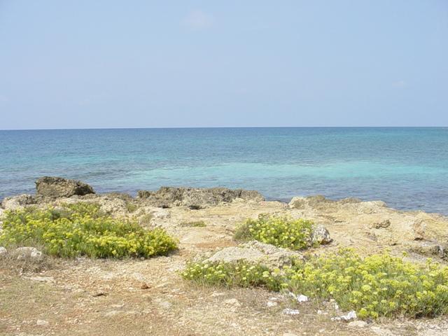 Marina di Alliste e' una piccola zona residenziale con un paesaggio naturale da lasciare veramente senza fiato. Di solito viene scelta da famiglie o da gruppi di amici che hanno bisogno di trascorrere una vacanza nel Salento in tranquillita'.