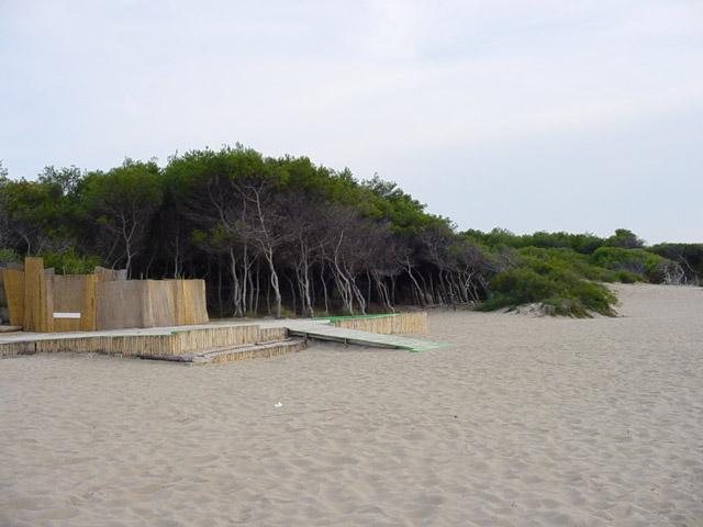 La spiaggia e' di sabbia bianca finissima. La costa ha una parte boscosa subito dietro la spiaggia, in modo da poter sia usufruire del sole, ma anche del refrigerio di stare all'ombra.