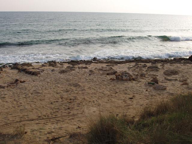 Oltre alla presenza del bel mare, Mare Verde offre hai turisti diverse strutture turistico ricettive, dove trascorrere le proprie vacanze.