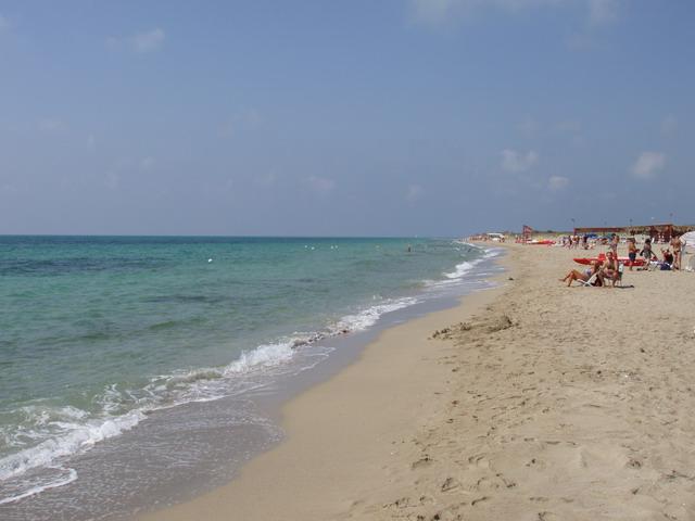 Sabbia dorata finissima, costa bassa, mare azzurro e trasparente questa e' Torre Mozza.