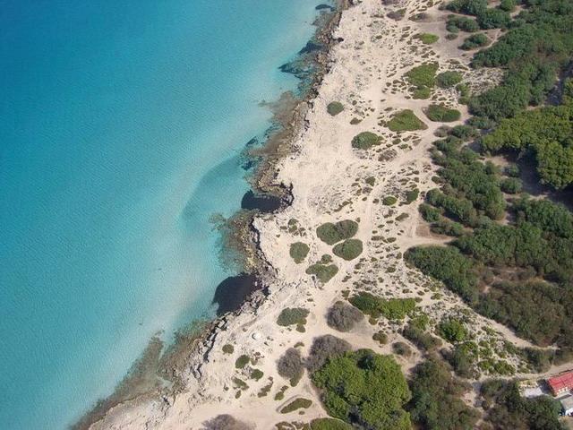 Immersa in una fitta pineta, la costa di Lido Pizzo si cela dietro i pini e presenta un litorale basso e sabbioso che man mano sale sino a caratterizzarsi per la presenza di scogli di modeste dimensioni.