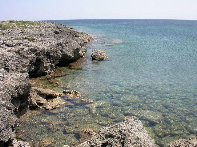mare limpido e costa rocciosa bassa aTorre Colimena