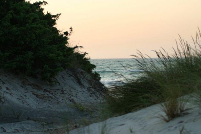 dune di sabbia a Torre Rinalda