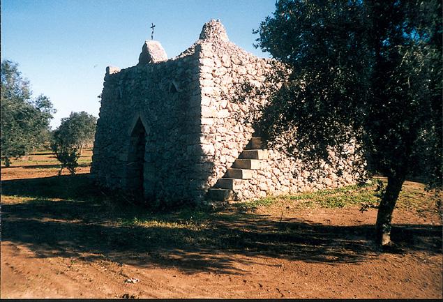 pajara nell'immediato entroterra della localita' di Torre Rinalda