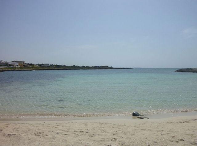 La spiaggia di Torre Squillace e' caratterizzata da lunghe fasce di sabbia dorata, il mare cristallino con fondale basso e' sabbioso