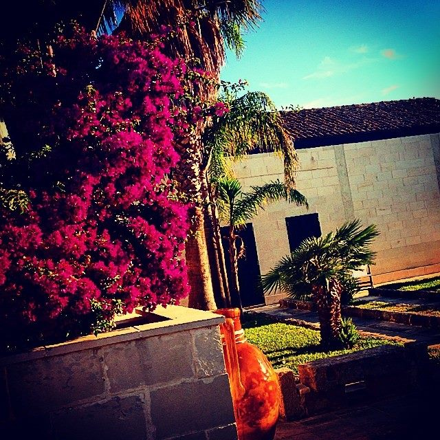 giardino interno alla masseria
