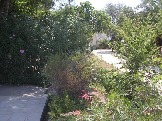 Area pinetata - Residence La Pineta