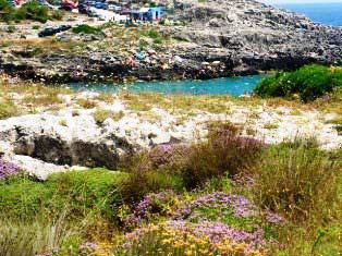 Casa vacanza La Scisa a pochi chilometri dal mare