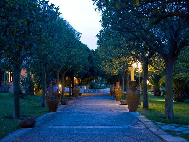 Viale alberato all'interno del Villaggio Hotel Araba Fenice