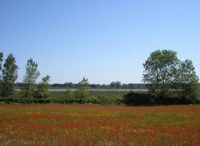 La natura intorno Agriturismo Il Piccolo Lago