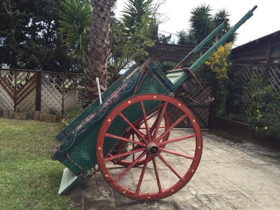 antichi mezzi di locomozione