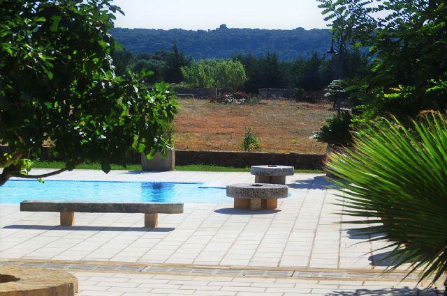 il giardino che circonda la piscina