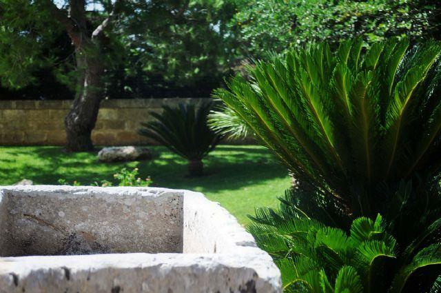 il giardino verde e lussureggiante
