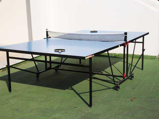il tavolo da ping-pong