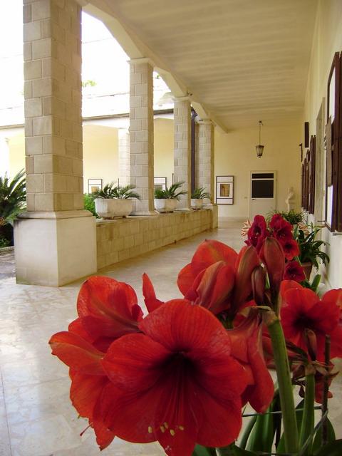 angolo relax del monastero
