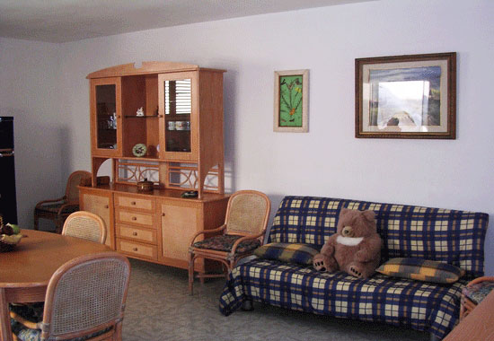 soggiorno con due posti letto grazie alla presenza di un divano letto matrimoniale trasformabile