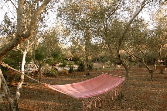 amaca per il relax nel giardino di Agriturismo Nova Isola Verde