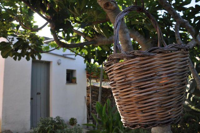 Spazi e oggetti tipici della Masseria Salentina