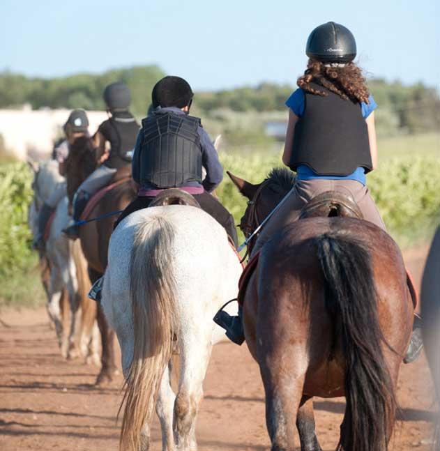 passeggiate a cavallo organizzate da masseria bandino