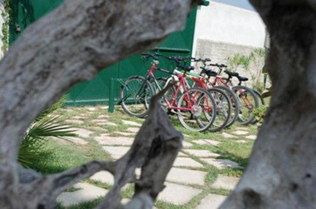 le bici a noleggio a portata di mano