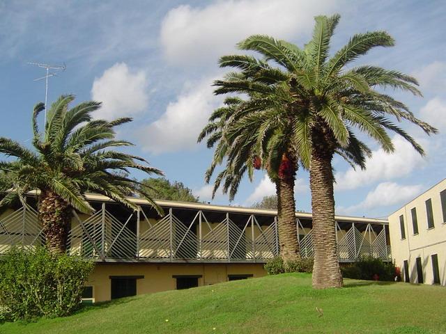 Spazi verdi antistani gli appartamenti in affitto all'interno del Residence Serra Alimini Due