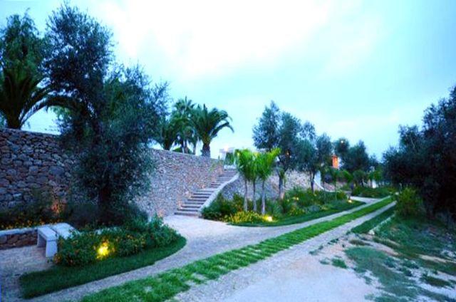 muri a secco e alberi di ulivo circondano la tenuta