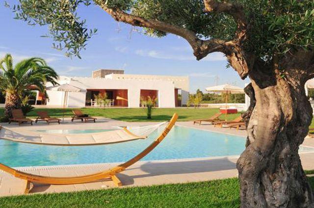 amache e alberi di ulivo circostanti la piscina
