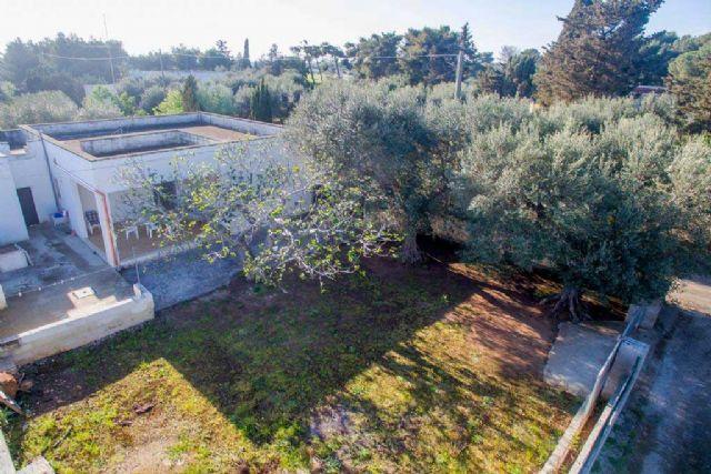 Vista dall'alto della casa vacanza Villa Esedra