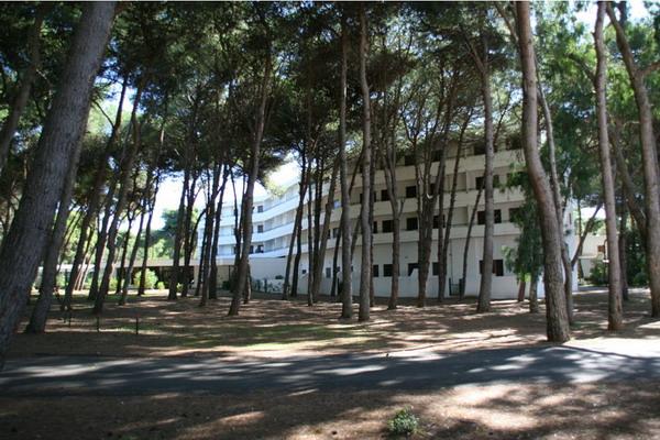 Gli ampi spazi verdi che circondano il Residence Campoverde